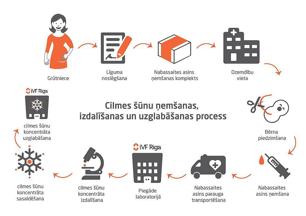 procesa_organizacija