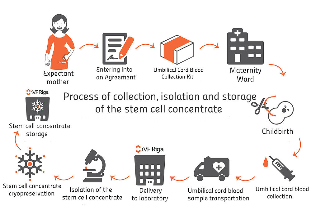 Cord Blood Collection Stem Cell Collection