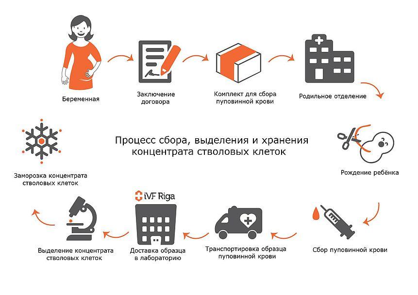 organizacija_processa
